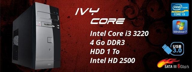 MICR-OS.COM Ivy Core
